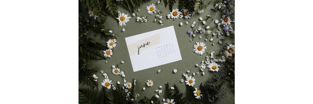 Der Garten im Juni - Der Garten im Juni