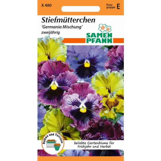 Stiefmütterchen, Germania Mix