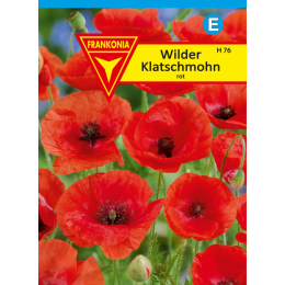 Mohn, Wilder Klatschmohn