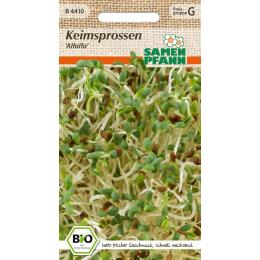 Keimsprossen Alfalfa, BIO