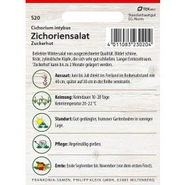 Zichoriensalat, Zuckerhut
