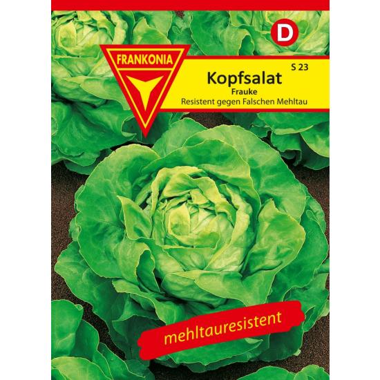 Kopfsalat, Frauke
