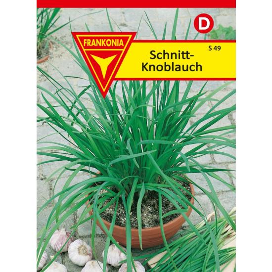 Schnitt - Knoblauch