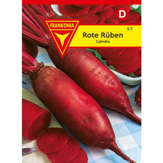 Rote Rübe, Cylindra