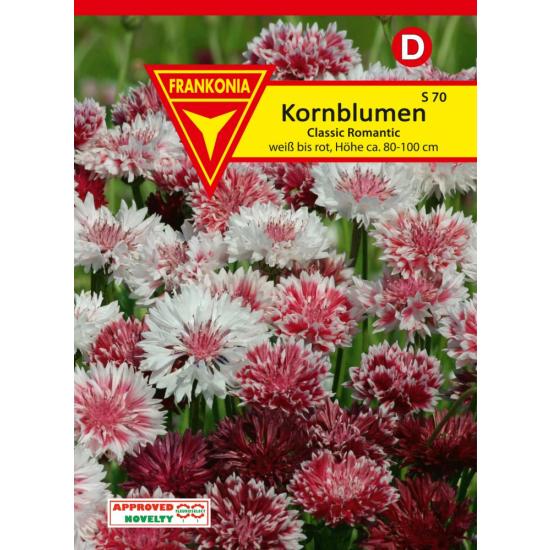 Kornblume, Classic Romantic