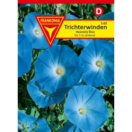 Trichterwinde, Heavenly Blue