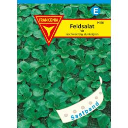 Feldsalat, Vit Saatband