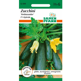Zucchini, Ambassador