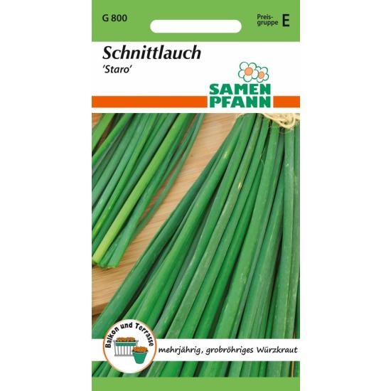 Schnittlauch, Staro