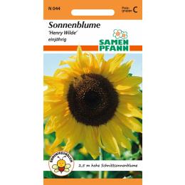 Sonnenblume, Henry Wilde (Goldener Neger)