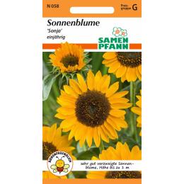 Sonnenblume, Sonja