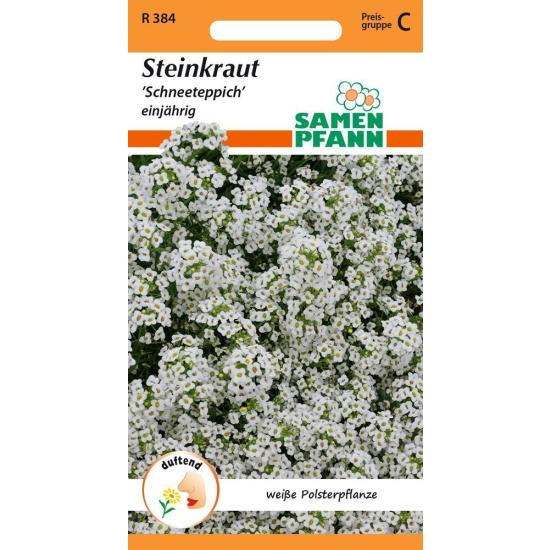 Steinkraut