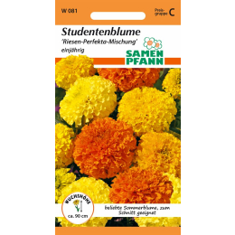 Tagetes, hohe Mischung