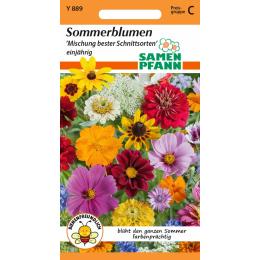 Sommerblumenmischung