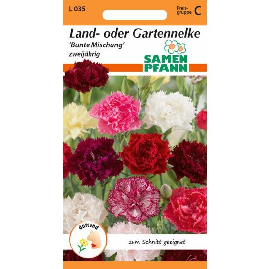 Land- oder Gartennelke, Mischung