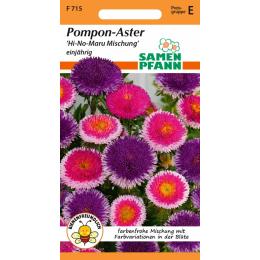 Pompon Aster, Hi-No-Maru Mix