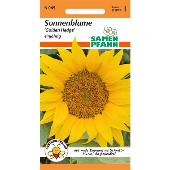 Sonnenblume, Golden Hedge (pollenfrei)