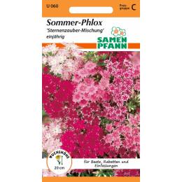 Sommer-Phlox, Sternenzauber-Mischung