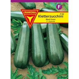 Zucchini, Kletterzucchini, Black Forest F1