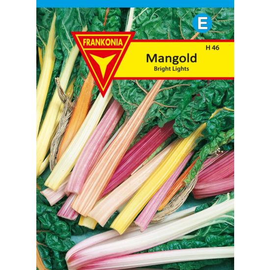 Mangold, Brights Lights