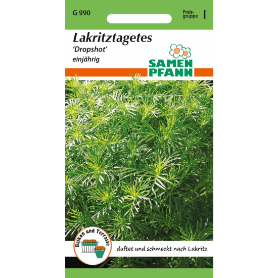 Lakritz - Tagetes Dropshot