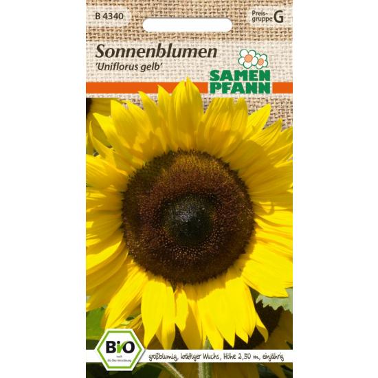 Sonnenblume Uniflorus, BIO