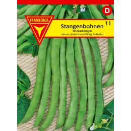 Stangenbohne, Neckarkönigin