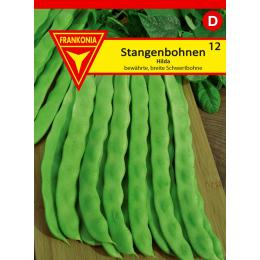 Stangenbohne, Hilda