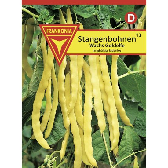 Stangenbohne, Wachs Goldelfe