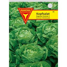 Kopfsalat, Kagraner Sommer 2