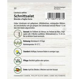 Schnittsalat, Hohlblättriger Butter
