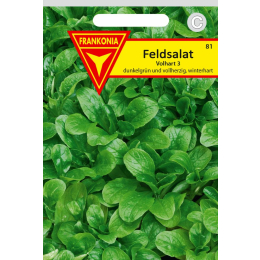 Feldsalat, Dunkelgrüner Vollherziger