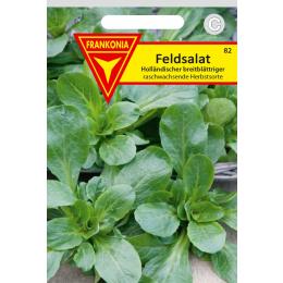 Feldsalat, Holländischer breitblättriger