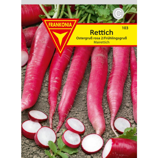 Rettich, Mairettich, Ostergruß rosa