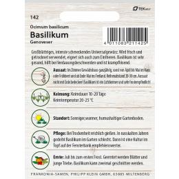 Basilikum, Genoveser