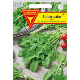 Salatrauke, Rucola