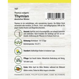 Thymian, deutscher Winter