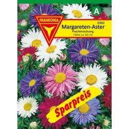 Margareten-Aster, Prachtmischung