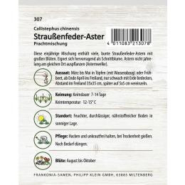 Straußenfeder-Aster, Prachtmischung