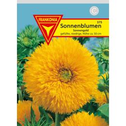 Sonnenblume, Sonnengold