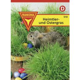Heimtier- und Ostergras für Schalen